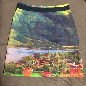 Anthropology Meadow Rue Skirt Size 4 Multicolor